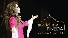 """""""Este primer volumen CD + DVD en vivo desde Bellas Artes, es un testimonio parte de mi vida en el que seleccioné 20 temas muy especiales"""", reveló Guadalupe Pineda."""