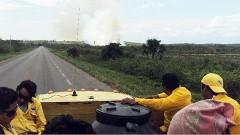 El municipio más afectado es el de Bacalar, con 6 conflagraciones y una pérdida de 537 hectáreas de porción arbórea.