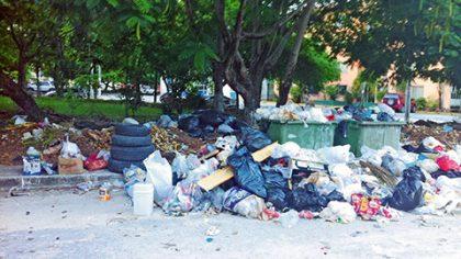 En foco de contaminación se convirtieron los puntos de recepción de la basura en la ciudad, en particular en regiones populares.